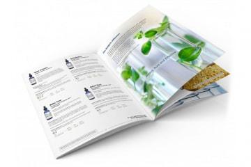 Thiết kế catalogue đa dạng